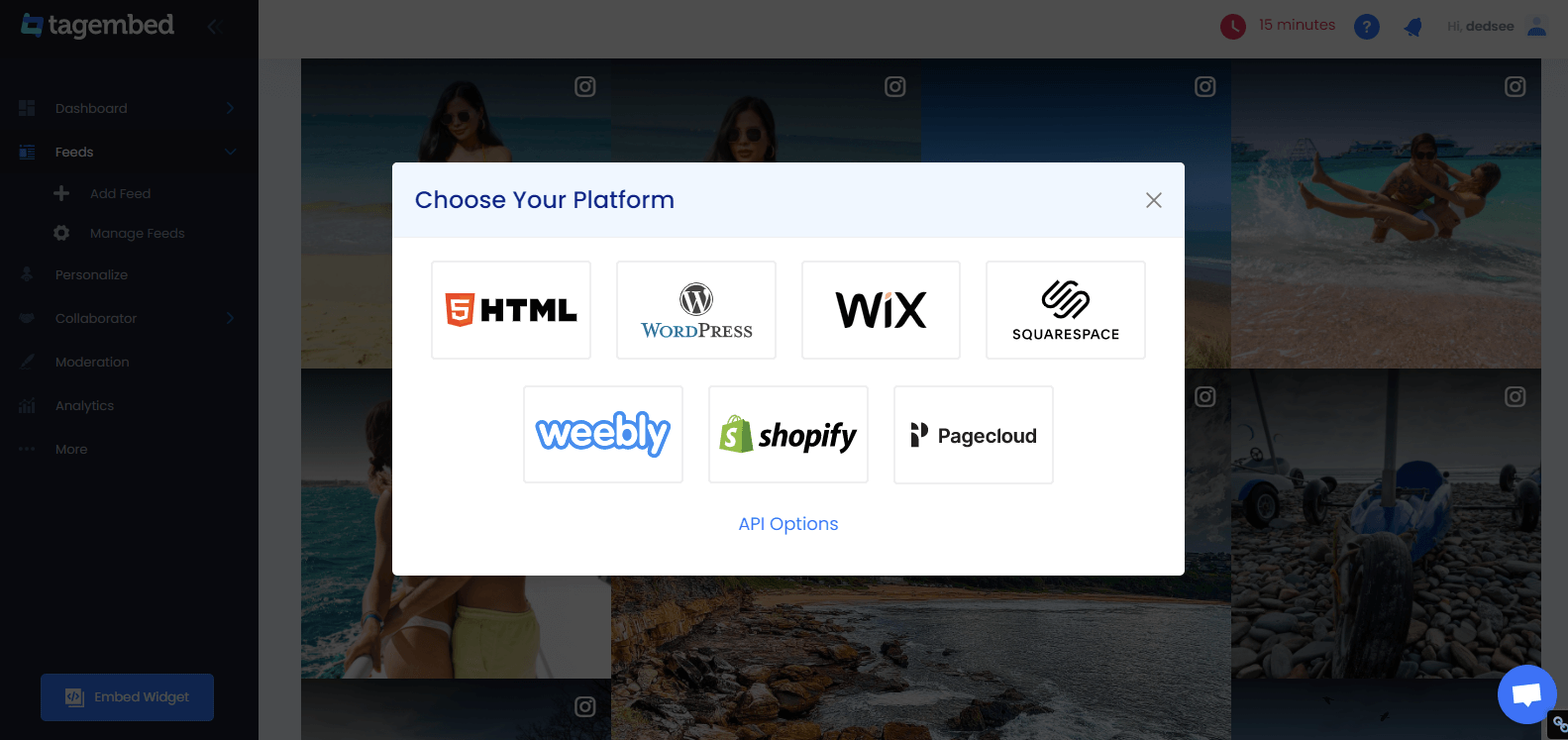 Instagram Feed To Shopify Website