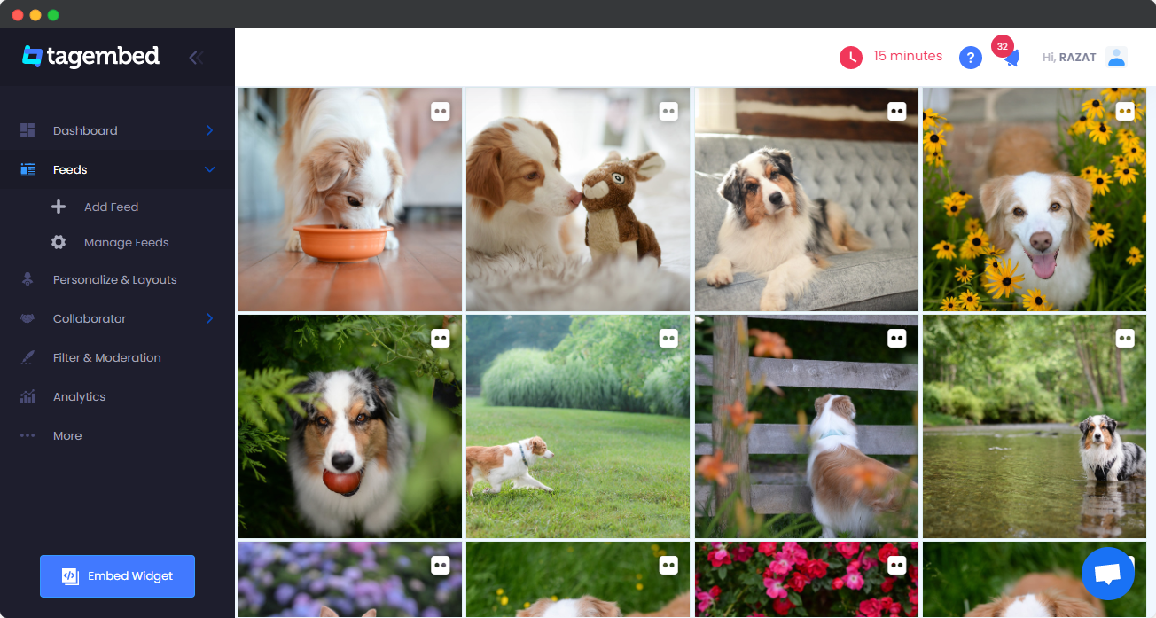 Embed Flickr Album On Website
