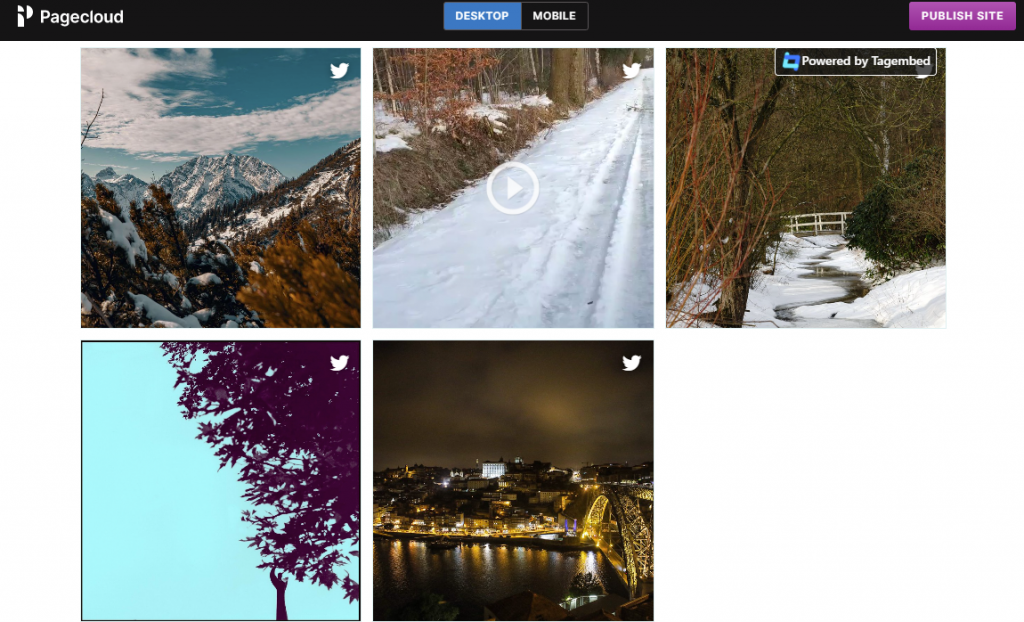 embed social feed on pagecloud