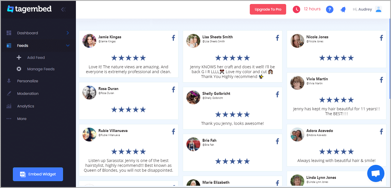 Embed Facebook Reviews on Pagecloud