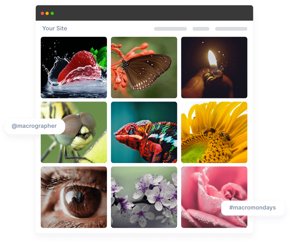 collect flickr feeds at one place