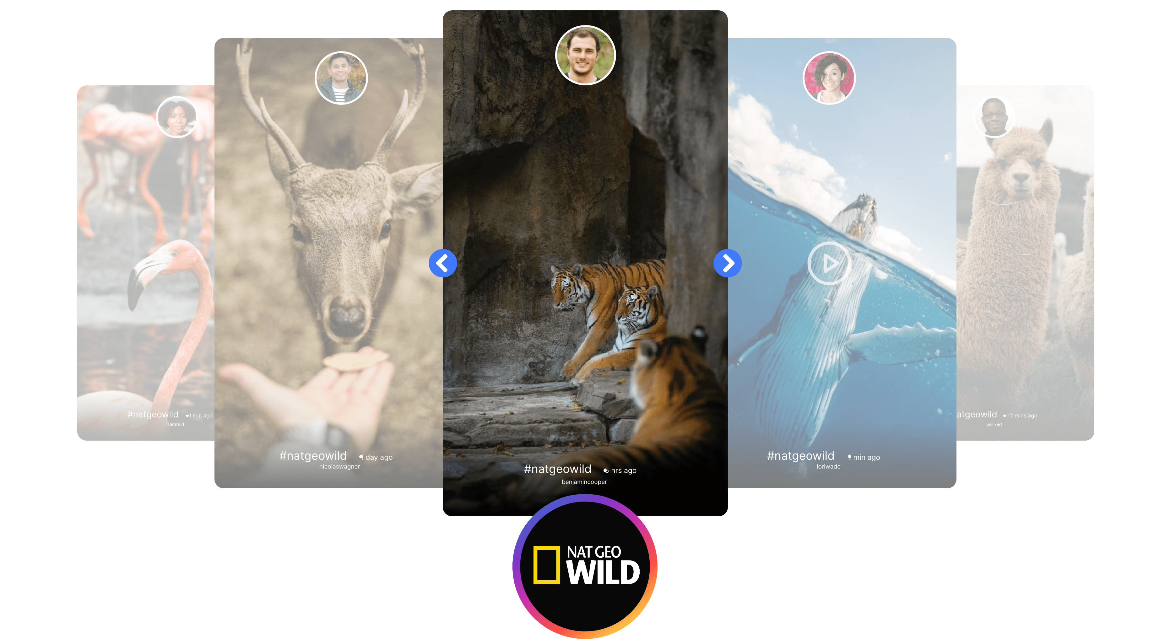 embed Instagram stories widget on website